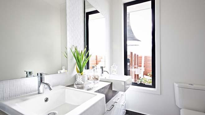 Cây lưỡi hổ nên trồng ở đâu - trong phòng tắm