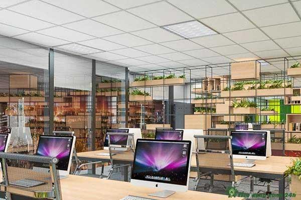Trang trí phòng làm việc công sở Màu sắc tổng quan không gian làm việc