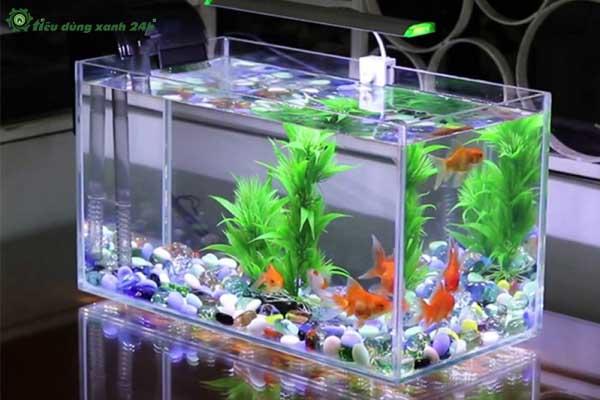 Trang trí phòng làm việc công sở bằng bể cá