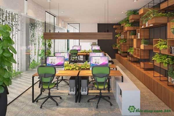 Trang trí phòng làm việc công sở bằng cây xanh