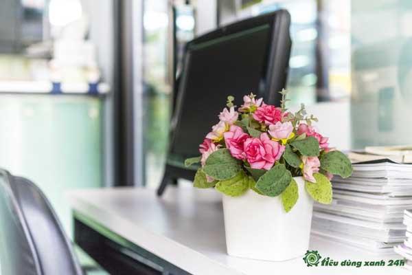 Trang trí phòng làm việc công sở bằng hoa tươi