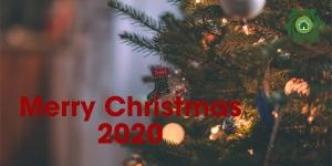 Tạo 6 cách HOT nhất trang trí Noel văn phòng năm 2020